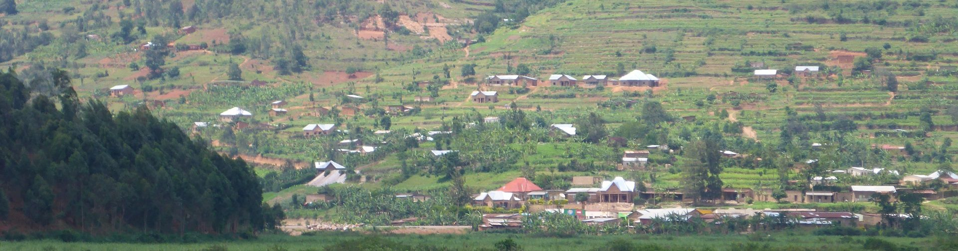 Changing farm structure and rural transformation in Africa