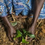 Webinar: The role of land certification in securing women's land rights on collective lands