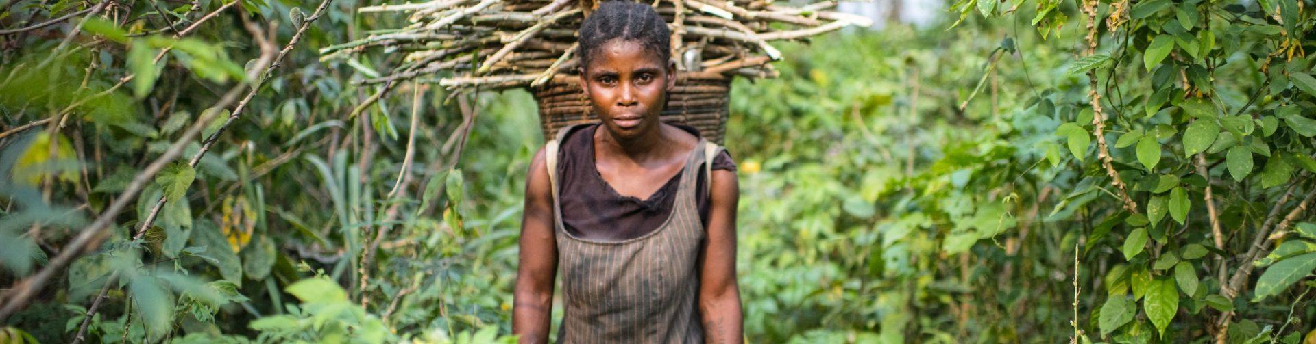 Why gender matters in forest restoration