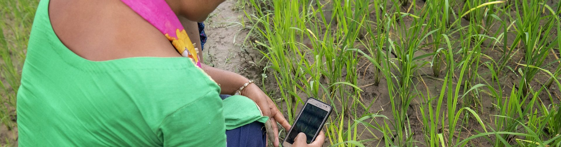 What's next for CGIAR?
