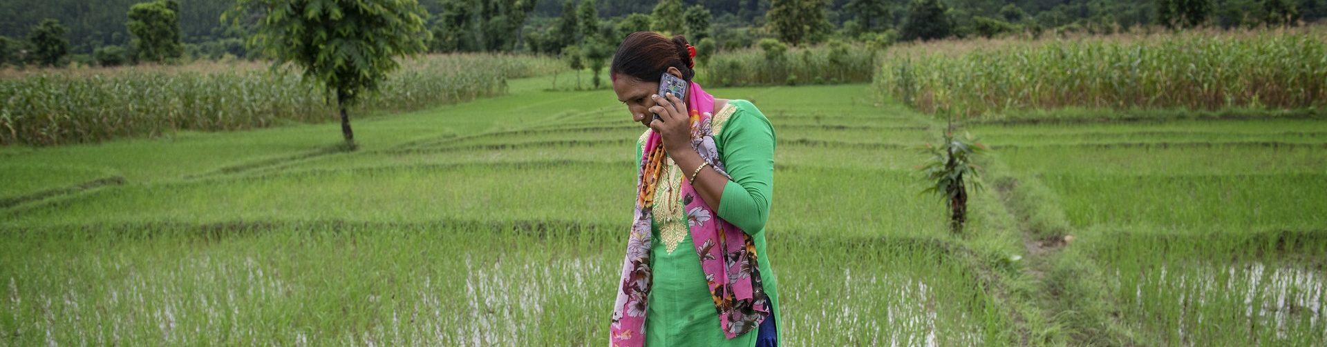Using mobile phones for survey research in the time of COVID-19 lockdowns and beyond