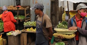 COVID-19 Policy Response (CPR) Portal: Identifying trends and implications for food systems