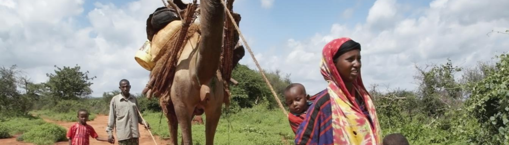 New IFAD/CGIAR note on Gender and Pastoralism: Issues to consider, tools to use
