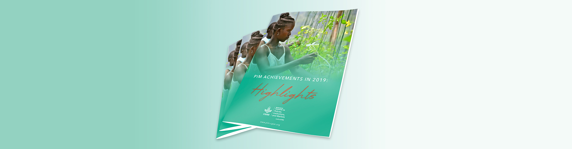 PIM Achievement in 2019: Highlights