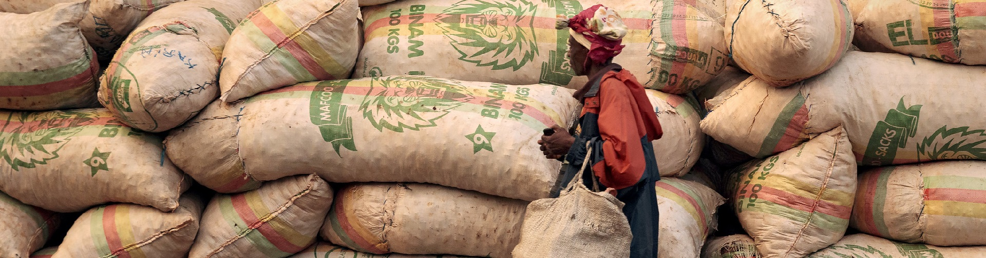 Food and agricultural trade in the new policy environment: How can WTO members support economic recovery and resilience?