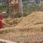 WEBINAR: Migration and gender dynamics in irrigation governance in Nepal