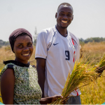 Investing in Farmers: Results and key lessons of the Agriculture Human Capital Investment Study