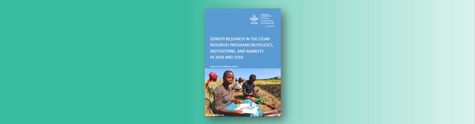 Report: Gender research in PIM in 2018-2019