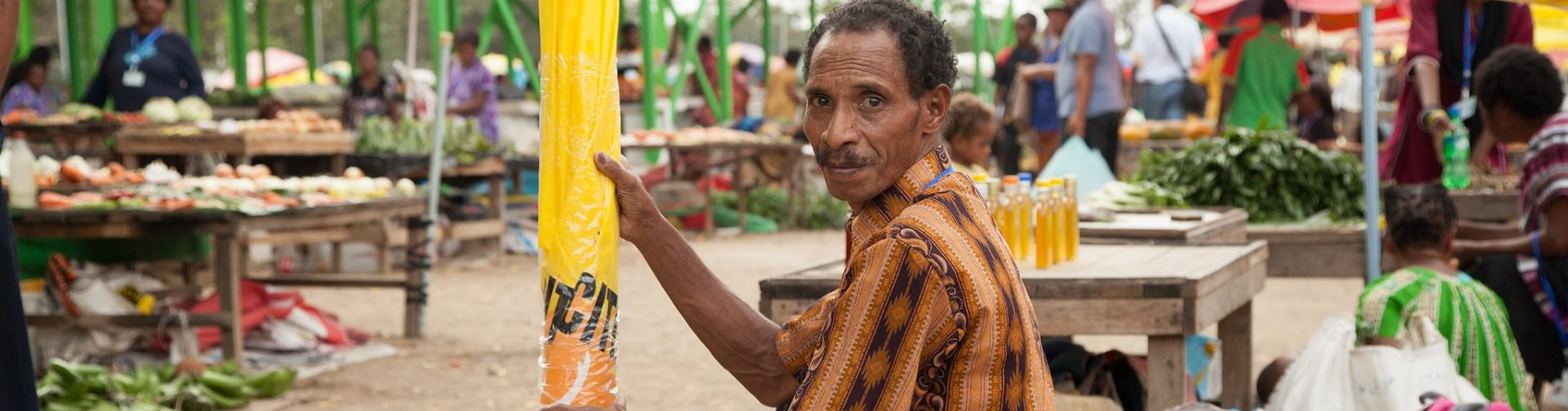 COVID-19 and other shocks facing Papua New Guinea's food economy