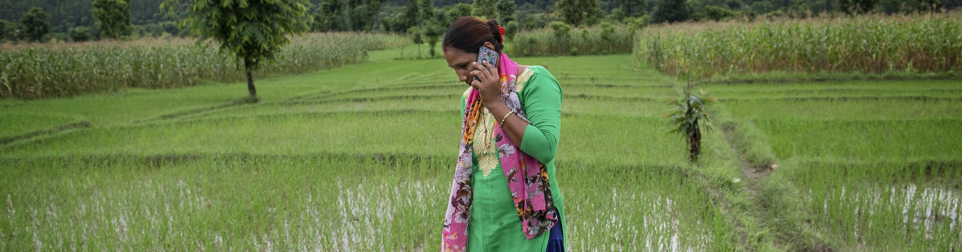 Feminization of Agriculture: Building evidence to debunk myths on current challenges and opportunities (Webinar #2)