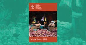 PIM Annual Report 2020