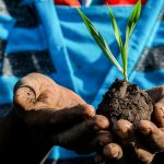 Promise of the Commons for Sustainable and Equitable Food Systems