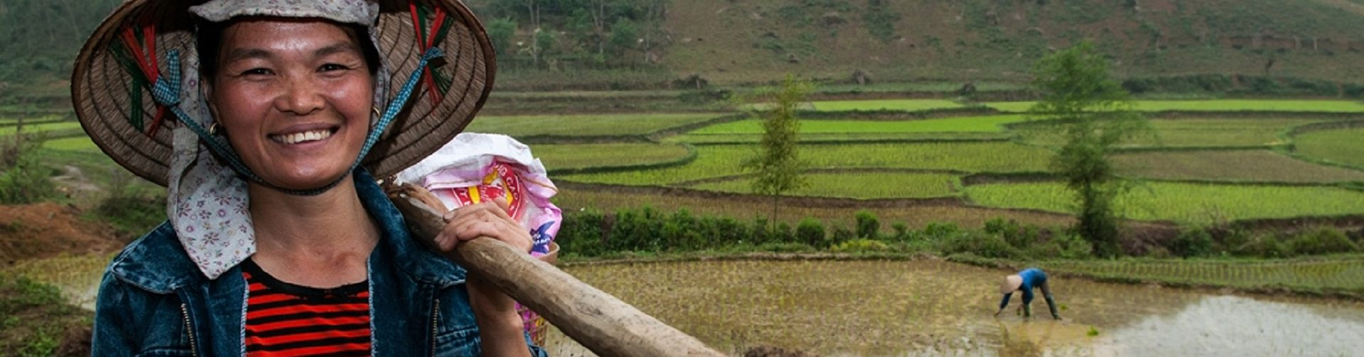 Myths about the feminization of agriculture: Implications for global food security